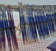 «Россия» выступила на лыжном марафоне