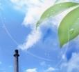 В Балаково атмосферный воздух и радиационная обстановка соответствуют норме