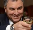 Вместо Вячеслава Володина бизнесом занимается его 80-летняя мать