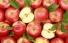 В Балаково уничтожили более 100 килограмм подкарантинных яблок, мандаринов и апельсинов