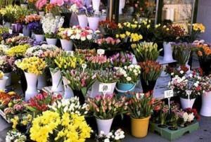 цветы_рынок_цветочный