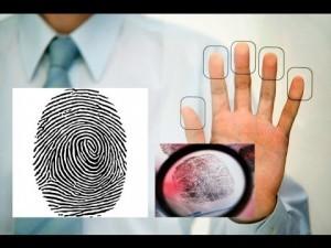 отпечатки пальцев_дактилоскопия