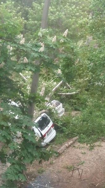 упавшее дерево балаково_помятые авто