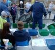 В Балаково во время гонок мотоцикл вылетел на трибуны со зрителями