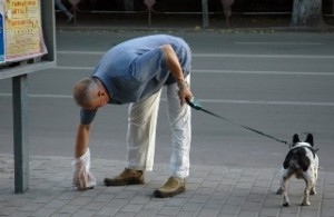 уборка за собакой