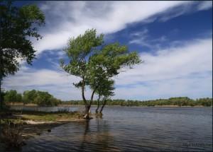 погода, природа, ветер, река, лето
