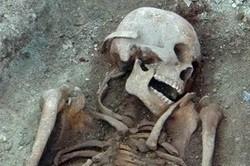 скелет_человека