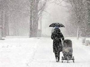 снег_метель