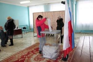 выборы_быков отрог